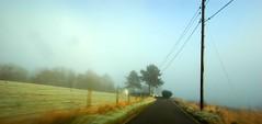 Holy Loch coast road
