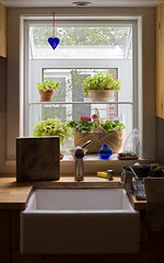 Sink ('SeraphimC) Tags: life plants window kitchen glass delete10 canon delete9 delete5 50mm delete2 still dynamic heart sink delete6 delete7 save3 delete8 delete3 delete delete4 save save2 5d range woodblock save2hooray