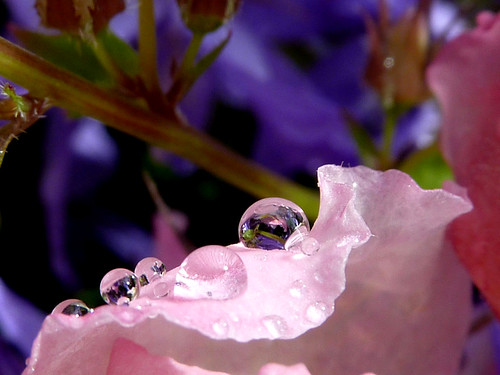 The last droplets ...for now...
