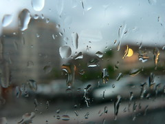 Aplastamiento de las gotas (cctrilla) Tags: city light luz window rain ventana lumix sadness tristeza grey gris words drops lluvia darkness cuento ciudad gotas tale palabras 100club oscuridad relato cortazar supershot 50club cctrilla flatteningofdrops