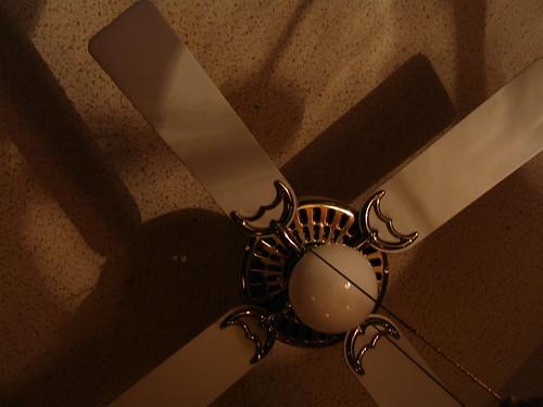 Shadow Fans