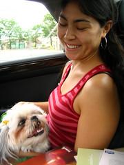 IMG_3746_1.JPG (Chiptography) Tags: dog marzipan maltzu