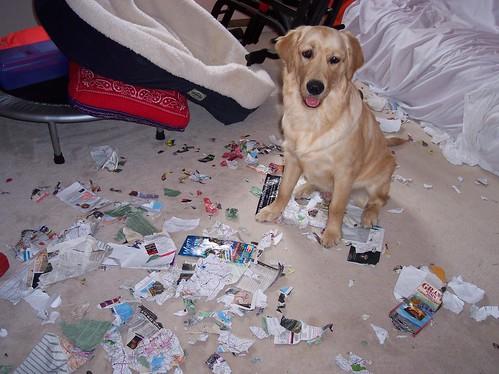 Brinkley's mess Summer 2007