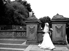 Marry me ? (Cristina.Colto) Tags: nyc wedding bride centralpark
