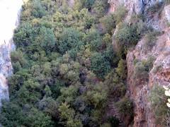 070926170a Mersin - Silifke - Cennet Obruu (galpay) Tags: turkey heaven trkiye turquie trkei mersin silifke turquia turqua turchia    doline  obruk  cennet   galpay 070926