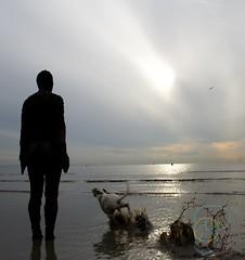 Darn dogs! (Mojo...) Tags: sculpture art beach statue place anthony another antony gormley crosby gapc noncoloursincolour mojo74 dopplr:explore=5081