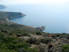 Sur le sentier d'Urchinu (Orchino) en balcon : la côte en dessous