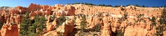Stitched shot of the rim at Bryce Canyon from the Queen's Garden Trail (view on Large) (Alaskan Dude) Tags: travel utah panoramas brycecanyon stitched hoodoos brycecanyonnationalpark navajotrail