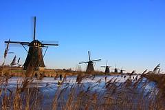 Kinderdijk  NL (rondendikken) Tags: winter holland soe alblasserwaard molinos ijs koud molens schaats beautysecret 5photosaday 100commentgroup flickrcinated