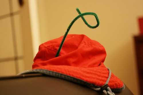 Day 174 - Crazy Hat