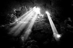 """Illuminate"" (Dan Ballard Photography) Tags: world pictures travel light bw favorite white black art nature wet water monochrome beautiful beauty underground landscape photography bay blackwhite blog amazing nikon asia flickr heaven gallery photographer artistic photos pics outdoor top magic great dramatic best vietnam explore most photographs photograph stunning prints ballard cave rays portfolio pick powerful bnw touristattraction lightbeams halongbay dreamscape gallary photograpy veitnam nohdr nothdr outdoorphotographer coloradophotographer d700 danballard danballardphotography danballardphotogarphy raysgod"