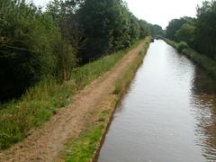 Taraloka canal 1