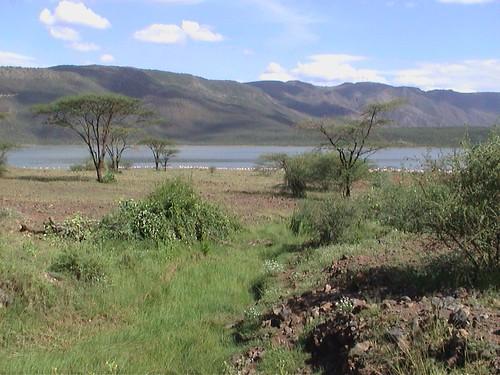 LB Lake Bogoria Lake Landscape