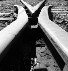 fork in the line (astroboy_71) Tags: life blackandwhite bw monochrome train path traintracks perspective tracks railway australia fork queensland choice railwayline steamtrain decisions amamoor