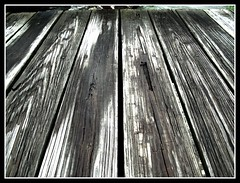 Wood In HDR (TheSki) Tags: wood bridge blackandwhite color art beautiful contrast digital america creek austin photography design wooden cool exposure texas fuji dynamic angle artistic grain divine photograph american stunning s7000 americana popular technique hdr shoal atx artisitic bestshot flickrhits fujis7000 theski davidgaiewski austinartbeautiful