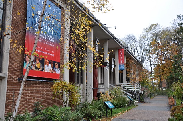 Burke museum, University of Washington