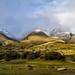 Otago Farmland