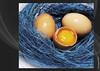 UOVA (Francesco Carta) Tags: stilllife food colors photographer excellent awards carta francesco paglia uova aplusphoto excellentphotographerawards proudshopper