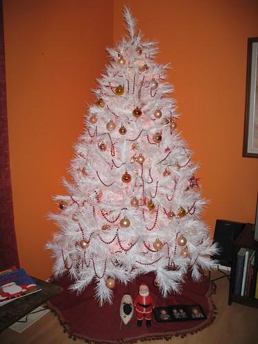 Christmas 2008 at home