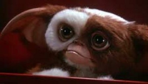gremlins-gizmo-movie-monster