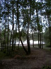 La tranquilit (LenazPic) Tags: nature lac tranquilit respirer