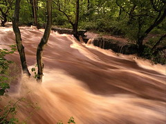 River Rivelin (Roger B.) Tags: rain river flooding flood sheffield torrent rivelin rivelinvalley spate