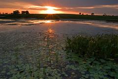 Crooked Slough Sunset 1, (7/2/07) (baldwinm16) Tags: sunset illinois forrest prairie preserve springbrook springbrookprairie