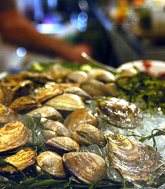 Bar Crudo Raw Bar