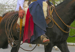 Farrapos (Eduardo Amorim) Tags: brazil horses horse southamerica brasil caballo cheval caballos bravo cavalos pelotas pferde cavalli cavallo cavalo gauchos pferd riograndedosul pampa hest hevonen campanha brsil chevaux gaucho  amricadosul hst gacho  amriquedusud  gachos  sudamrica suramrica amricadelsur  sdamerika supershot  pilchas  pilchasgauchas costadoce americadelsud abigfave anawesomeshot  americameridionale pilchasgachas campeiros campeiro eduardoamorim