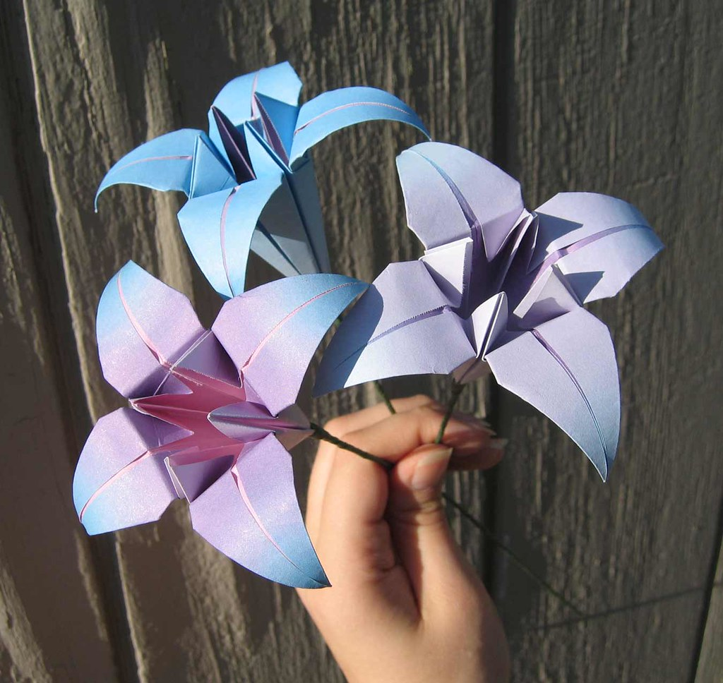 The worlds best photos of lilies and origami flickr hive mind origami lilies amandakay82 tags flowers iris flower origami lily lilies irises izmirmasajfo