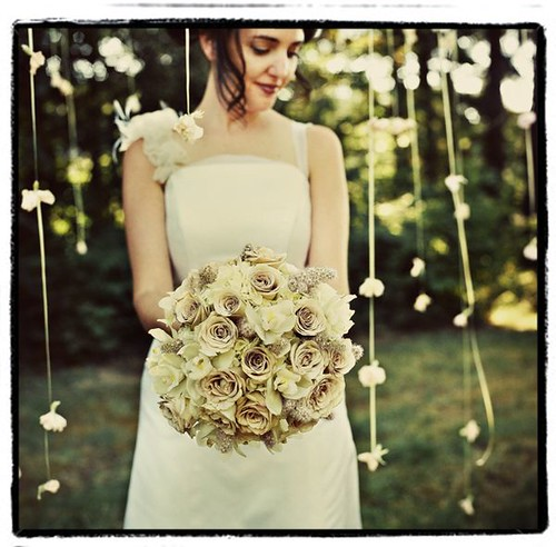 2009_05_weddingroses_onelovephoto