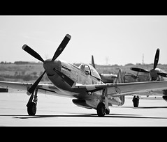 Parking (C.R. OBrien) Tags: blackandwhite bw wwii landing airshow planes mustang fighters p51 p51mustang fighterjets allianceairshow ftworht