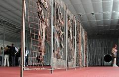 documenta 12 | Dmitri Gutov / Fence | 2007 | Aue-Pavillon (near entrance)