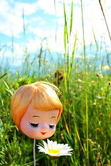 Go a Head & Smell the Flowers (boopsie.daisy) Tags: green nature field grass pretty peaceful kitsch dreaming daisy tallgrass dollhead headonastick closedeyes bradleydoll