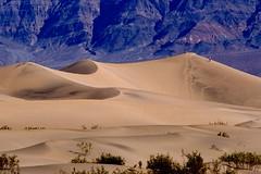 Desert Hike (Jeffrey Sullivan) Tags: sand dunes death valley national park california usa jeff sullivan desert landscape nature easternsierra hwy395 jeffsullivan jds copyrighted allrightsreserved sanddunes deathvalley deathvalleynationalpark stovepipewells dry hot nationalpark deva caliparks canon eos digital rebel xt sigma 28300mm