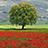 Raccontare la natura ( Armonia e contraddizioni ) group icon