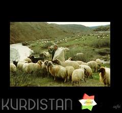 Bawêş - by Kurdistan KURD كوردستان كردستان ا