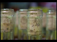pico | carmelo (Juampa..) Tags: uruguay pico vinos carmelo safariba irurtia safaribacarmelo