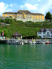 Meersburg (jensiuk) Tags: travel vacation lake germany landscape deutschland see harbor boat vineyard europe urlaub september finepix fujifilm bodensee 2007 meersburg lakeconstance s6000 neueschloss jensiuk