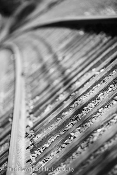 train track goodness