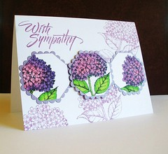 sympathy card (nancyljk) Tags: f354 k5376