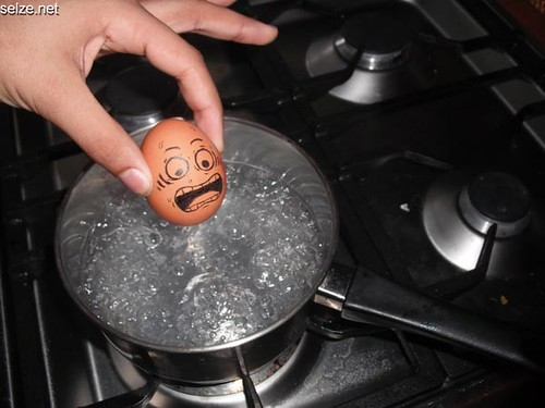 Funniest Egg Arts Cool Photos (3)