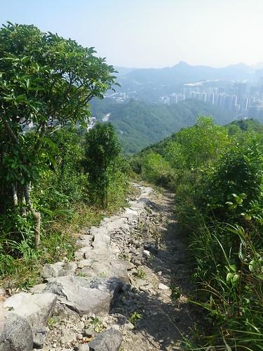 27/10/10 8.5km Razor Hill Run