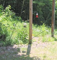 Bent feeder poles