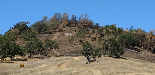 Scorched hilltop