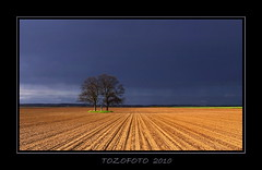 (tozofoto) Tags: trees light sky storm colors field canon landscape spring bravo hungary natur zala mywinners colorphotoaward tozofoto superstarthebest