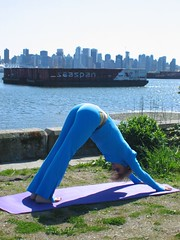 Downward Dog (darmorrow) Tags: yoga harbourside