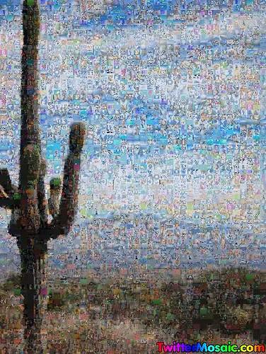 cactus_mosaic_40