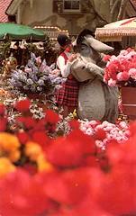 msflowerseyore (Disneyland Postcards) Tags: shop mainstreet disneyland postcard characters collecting eyore disneyana mainstreetflowermart