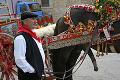 Sicilian Pride (Giuseppe Bognanni) Tags: penis dick folklore pride sicily tradition sicilia folklor orgoglio schwanz pene novideo stolz picciotto sizilien fallo tradizione canoneoskiss mazzarino horsedick horsepenis carrettosiciliano bognanni disc0stu minchiazza canoneos450d fallodicavallo penedicavallo efs1855usm3556 giuseppebognanni